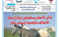 عدد جديد من جريدة عبدالة الجهوية الورقية للزميل احمد دو الرشاد
