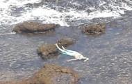 مياه البحر تلفظ جثة امراة بالقرب من ضريح سيدي بوزيد