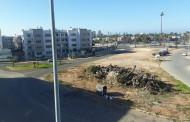 ساكنة شارع ابن باديس تشتكي من تنامي الازبال ومخلفات الاشجار