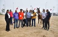 البطولة الوطنية لجمال الخيول العربية الأصيلة تنطلق بالحريسة الوطنية للجديدة