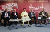 إسدال الستار على الجائزة الكبرى لصاحب الجلالة الملك محمد السادس للتبوريدة